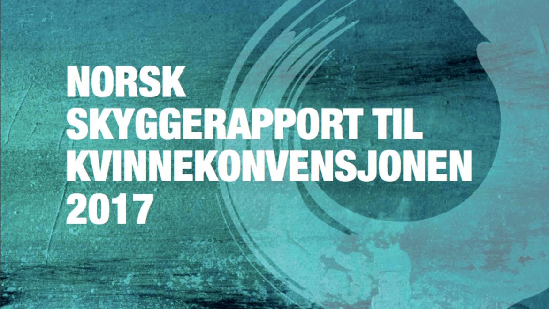 Likestillingen i Norge har blitt svekket