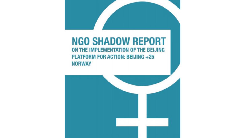 Norske organisasjoner analyserer Norges rapport på Beijing +25 i egen skyggerapport